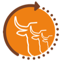 128-Cus-Logo@0,25x
